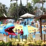 Beach Park recebe 280 crianças no Dia Nacional da Pessoa com Deficiência em Parques e Atrações Turísticas