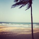 Beach Sounds em junho